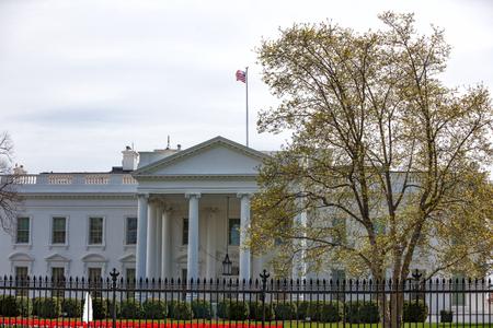 The White House in 1600 Pennsylvania Avenue NW, Washington DC, USA in the springtime