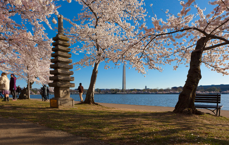 WASHINGTON DC - APRIL 8, 2018: The JapnaeseStone  Pagoda nestled in among the cherry trees and the Washington Monument in the background at the Tidal Basin during Cherry Blossom Festival 新聞圖片