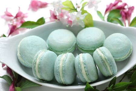 Homemade Delicious Turquoise French Vanilla Macaron Cakes