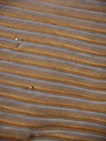 close up view beach sand lines background photo