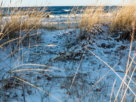 michigan snow: Winter landscape in Baltic sea beach cowered with show