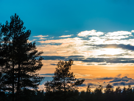 underbrush: Beautiful autumn forest and clouds at sunset Stock Photo