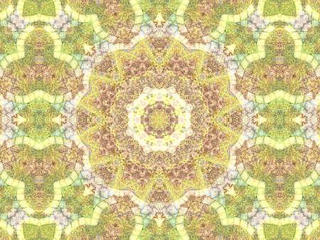 background kaleidoscope: Green abstract kaleidoscope background texture, star design