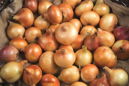 Lots of Yellow and pink onions in the basket on the bag.