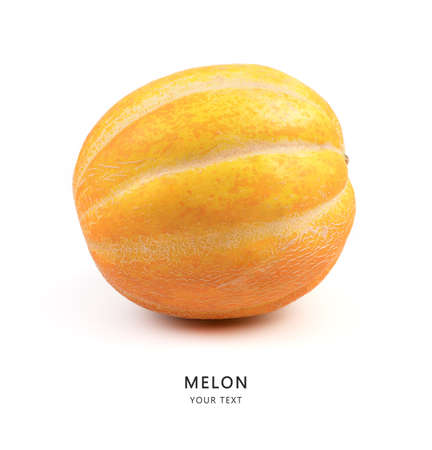 Ripe melon on a white background, side view. Fruit background with space to copy. Marketplace. The concept of proper nutrition. Imagens