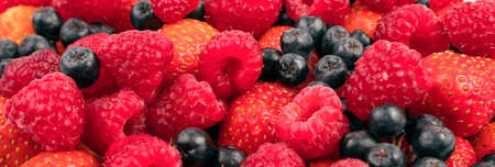 Background-panorama of a large assortment of fresh raspberries, strawberries, mountain ash. The concept of proper nutrition.