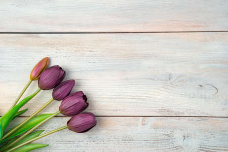 Purple tulips on a light wooden background. Top view with space to copy. The concept of holidays, International Womens Day.