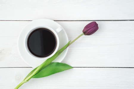 Purple tulip and white coffee cup on a light wooden background. Top view, with space to copy. Concept of March 8, spring. Standard-Bild