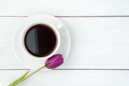 One purple tulip and a ceramic white coffee cup on a saucer on a light wooden background. Top view, with space to copy. Concept of festive backgrounds, spring. Standard-Bild