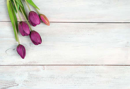 Flower background, Bouquet with tulips on white wooden background. Top view, with space to copy. Concept of March 8, spring.