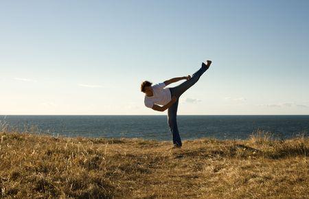 martial arts master high-kicking Stock Photo - 462989