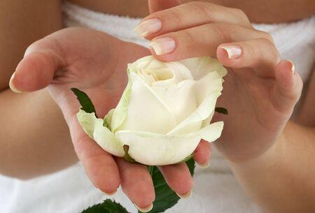 Hand sch�ne Frau mit Rosebud