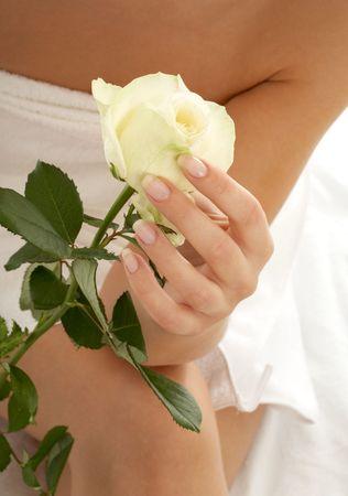 beautiful woman hand with rosebud photo