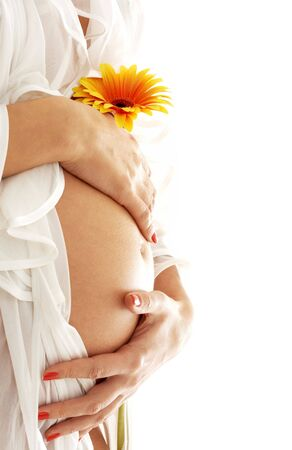 pregnant woman holding her belly and flower Stock Photo - 553115