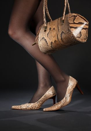 long legs in snakeskin shoes with handbag over black Stock Photo - 2967064
