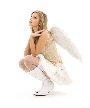 picture of lovely angel girl in furry skirt and corset Stock Photo - 3199961