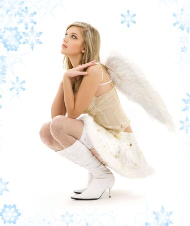 picture of lovely angel girl in furry skirt and corset Stock Photo - 3796757