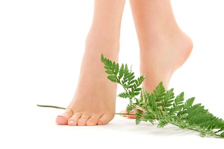 woman foot: picture of female feet with green leaf over white