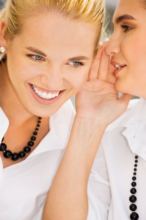 cute girlfriends: picture of two happy young girlfriends sharing secrets (focus on blonde) LANG_EVOIMAGES
