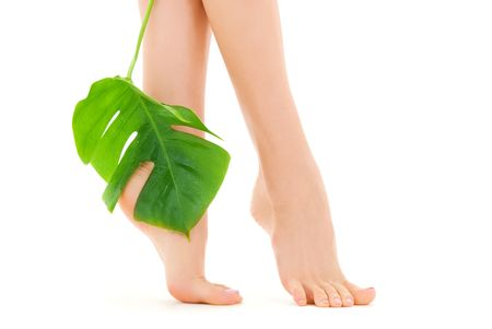 picture of female feet with green leaf over white Stock Photo - 4900538