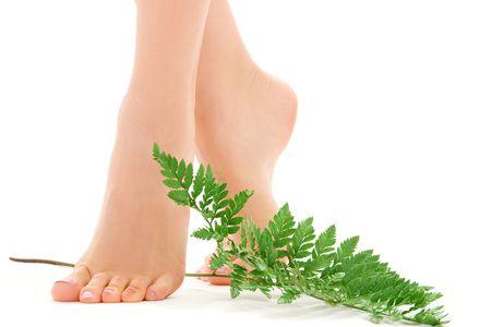 pedicure: foto di piedi femminili con foglia verde su bianco LANG_EVOIMAGES
