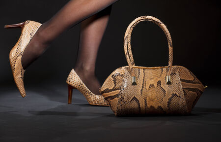 long legs in snakeskin shoes with handbag over black Stock Photo - 5057803