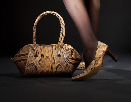 long legs in snakeskin shoes with handbag over black Stock Photo - 5197141