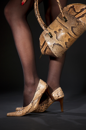 sexy legs stockings: long legs in snakeskin shoes with handbag over black LANG_EVOIMAGES