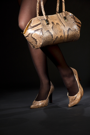 long legs in snakeskin shoes with handbag over black Stock Photo - 5349414