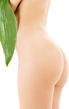 nude butt: picture of female torso with green leaf over white LANG_EVOIMAGES