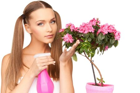 bright picture of lovely housewife with flowers Stock Photo - 7812331