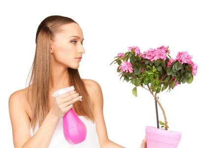 regando plantas: imagen brillante del ama de casa encantadora con flores