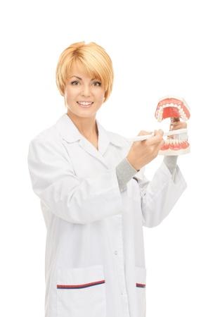 doctora: Foto de m�dico mujer atractiva con cepillo de dientes y mand�bulas