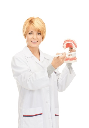 picture of attractive female doctor with toothbrush and jaws  photo