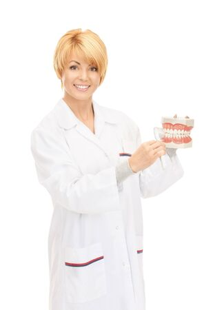 denture: picture of attractive female doctor with toothbrush and jaws