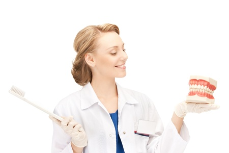 picture of attractive female doctor with toothbrush and jaws Stock Photo - 10597094