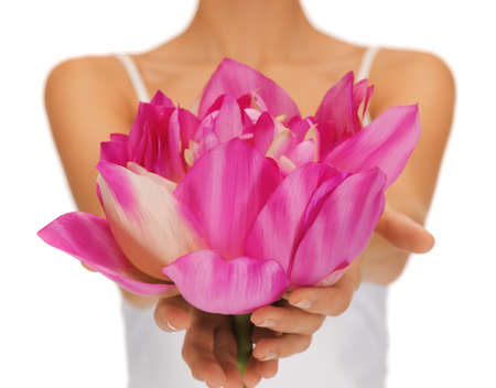 closeup picture of woman hands holding lotus flower  photo