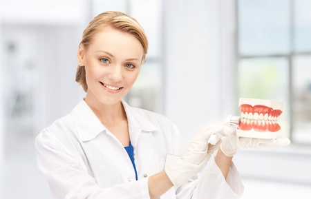 stomatologist: picture of attractive female doctor with toothbrush and jaws