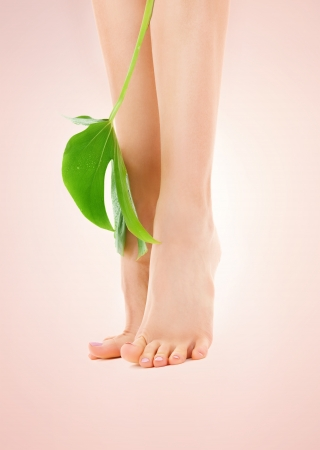 picture of female legs with green leaf over beige background photo