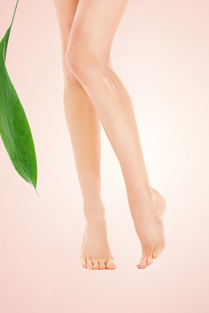 chiropody: picture of female legs with green leaf over beige background Stock Photo