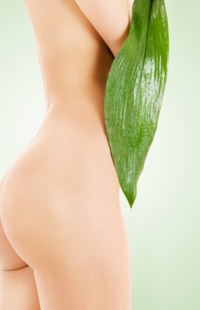 naked girl body: picture of female torso with green leaf Stock Photo