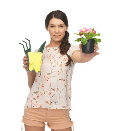 housewife gloves: lovely housewife with flower in pot and gardening set