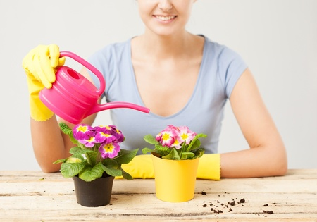 housewife gloves: lovely housewife with flower in pot and watering can Stock Photo