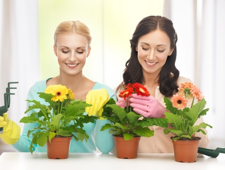 housewife gloves: two housewives with flower in pot and gardening set
