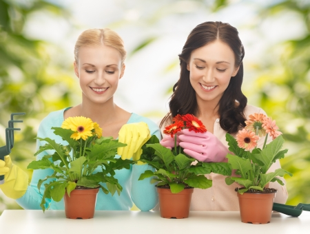 two housewives with flower in pot and gardening set photo