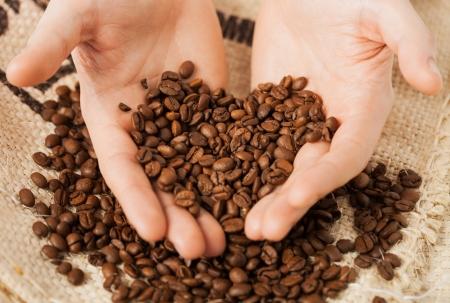 cafe colombiano: Cerca del hombre que sostienen los granos de café