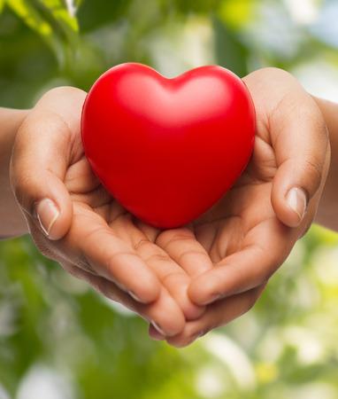 mensen, relatie en liefde concept - close up van de vrouw tot een kom gevormde handen met rood hart Stockfoto