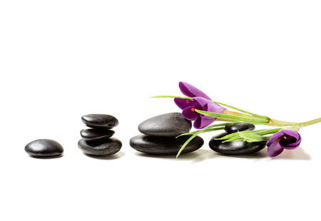 spa, heath and beauty concept - massage stones with flowers on mat photo