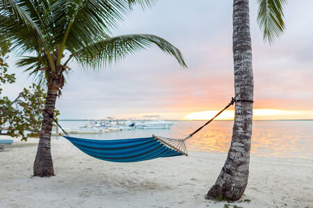beach, summer and leisure concept - blue hammock on tropical beach photo