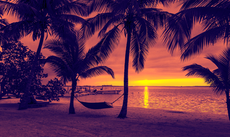 sunset beach: vacation, beach, summer and leisure concept - silhouettes of coconut trees with hammock on the beach, purple sunset view
